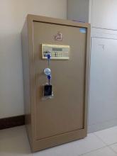 虎牌 BGX-A1/D-100 电子密码保险柜(土豪金)