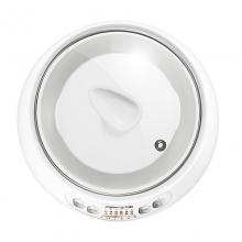 九阳(Joyoung)电炖锅 电砂锅陶瓷燕窝炖汤煲粥家用D-10G1