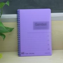 渡边(Gambol) DS1488 PP面透明螺旋笔记本 A5 80页