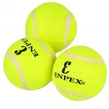 ENPEX乐士 业余娱乐练习款三只装网球