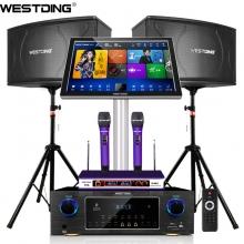 威斯汀(WESTDING) 点歌机家庭影院ktv音响组合功放套装 108智能语音双系统(2T版)