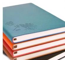 法拉蒙 仿皮笔记本 A5 228页 颜色随机