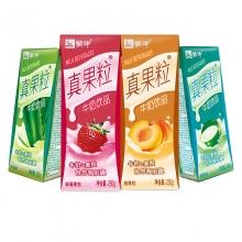 蒙牛 真果粒牛奶饮品(草莓+芦荟+椰果+桃果粒)250g*24 四种口味缤纷装 整箱