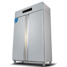 圣托(SHENTOP)RTD1000-B5 商用双开门立式 不锈钢高温消毒碗柜