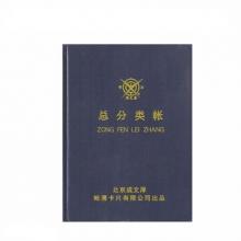 成文厚 101-92 记账本总分类账 大本总分类账账16开(100页)