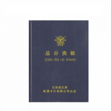 成文厚 101-92-10 记账本总分类账 大本总分类账账16开(50页)