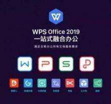 金山WPS Office 2019专业增强版(一年服务)