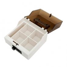 金隆兴(Glosen) B8056 密码锁财务印章盒 白咖