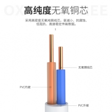 康普二芯芯电话跳线5米