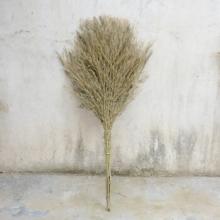 谋福 竹扫把  7号新款 高1.6米 宽0.6米 材质竹